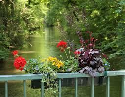 photoblog back to the english garden home schnitzelbahn