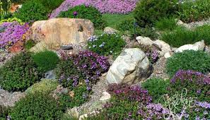 Slope Landscaping Ideas For Backyards Hillside Landscaping Ideas Helena Source Net
