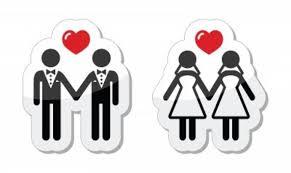 loi du mariage pour tous mariage pour tous ça va être chaud seronet