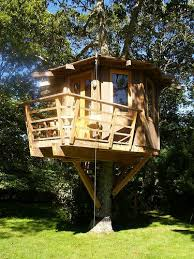 Tree House Home 2616 Best Build A Tree House Images On Pinterest Treehouses