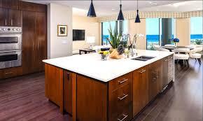 Kitchen Designed Photos 13 Stylish Palm Condo Kitchens