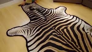 Genuine Zebra Rug Unboxing Grade A Felted Zebra Skin Rug Burchelli Breed Interior