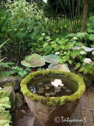 best 25 small garden ponds ideas on pinterest small backyard