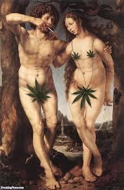 marijuana pictures gallery freaking news