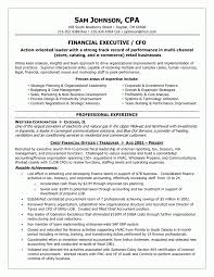 Procurement Sample Resume by Internal Resume Template