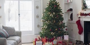 how to keep a christmas tree alive how to keep a christmas tree