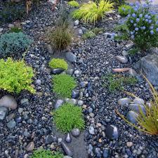 56 best rock garden images on pinterest gardening garden ideas