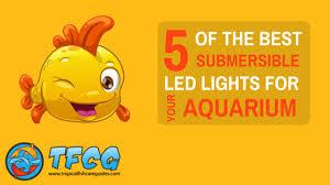 submersible led aquarium lights 5 best submersible led lights for your aquarium 2018 reviews