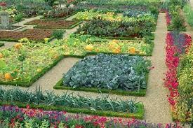 how to make a vegetable garden pretty best idea garden