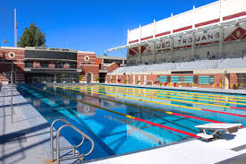 pool side view recreational sports usc student affairs