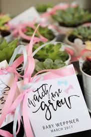 best 25 succulent favors ideas on succulent