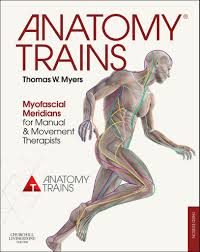 anatomy trains 3rd edition book u0026 posters thomas w myers