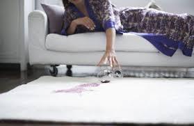 Upholstery Protection New York Scotchguard Carpet U0026 Upholstery Protection Flatratecarpet