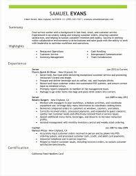summary exle for resume resume summary exles resume template ideas