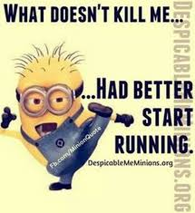 2214 minions images minions quotes funny