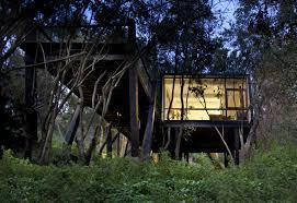 Tree House Floor Plan