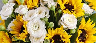 orlando florist flower delivery by edgewood flowers
