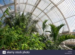 Garden Inside House by Inside The Palm House At Kew Gardens London England Stock Photo