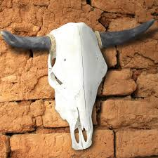 sunland home decor coupon genuine cow skull with horns grade a