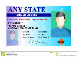 driver license identity card royalty free stock photo image 7824575