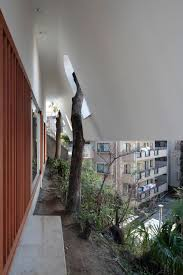Different House Designs Houses That Save Trees By Wrapping Themselves Around Them
