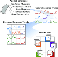 Chandler Fashion Center Map Comparative Mass Spectrometry Based Metabolomics Strategies For