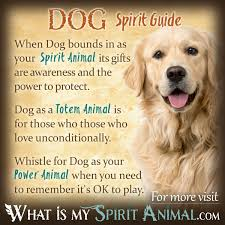 dog symbolism u0026 meaning spirit totem u0026 power animal