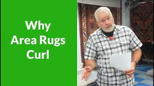 Area Rugs Victoria by Why Area Rugs Curl By Luvarug Com The Rug Cleaning Experts In
