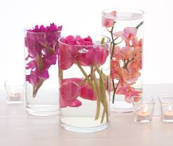 15 Inch Cylinder Vases Elegant Cylinder Vase With Flowers Glass Cylinder Vase With