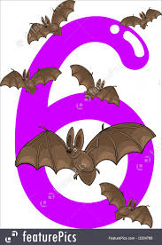number six and 6 bats illustration