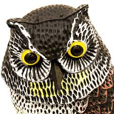 owl item large realistic owl decoy rotating head weed pest control crow