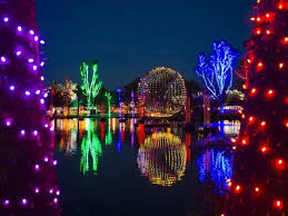 phoenix zoo lights military discount phoenix zoo a great guide for parents before going to the arizona zoo