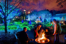 atlanta botanical garden lights atlanta botanical garden shines green this winter with new