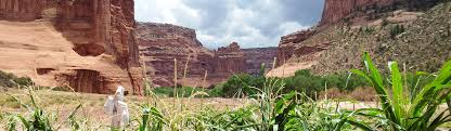 canyon de chelly national monument u s national park service