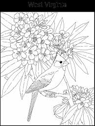 florida state flag coloring page coloring home