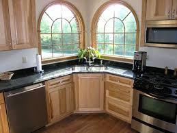 cool black kitchen cabinets rajasweetshouston com