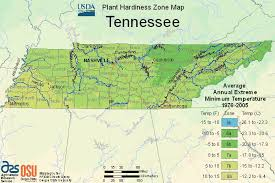 Tennessee vegetaion images Usda map of plant hardiness zone in tennessee gif