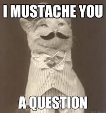 Question Meme - i mustache you a question original business cat quickmeme