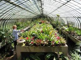 greenhouse gardening for dummies home outdoor decoration
