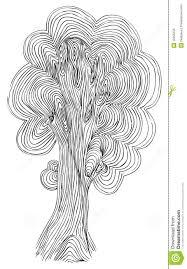 Oak Tree Drawing Oak Tree Vector Sketch Royalty Free Stock Image Image 12258156