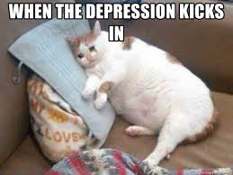 Depressed Cat Meme - when the depression kicks in dat sad fat cat meme generator