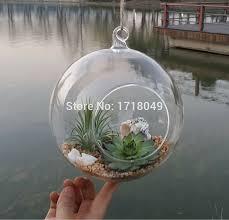 6pcs set glass orb planter vases hanging globe terrarium kit for