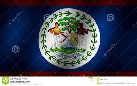 Belize Flag Belize Flag Stock Video Illustration Of Crown Belize 94517675