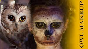 Halloween Animal Makeup Owl Makeup Youtube