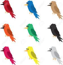 nine different colored birds isolated royalty free cliparts