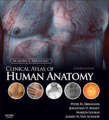 Anatomy Of Human Heart Pdf Inkling Interactive Medicine Textbooks For The Web Iphone And