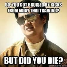 Muay Thai Memes - 9 best muay thai memes images on pinterest ha ha funny stuff and