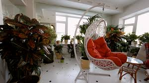 flowers in pots in luxury apartment interior showcase of