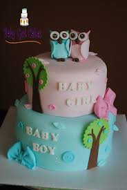 baby shower cake ideas for twin boy and baby shower diy