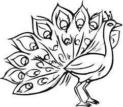 peacock coloring pages printable peacock 14 coloring page